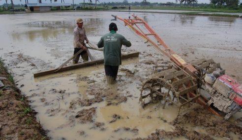 913 Petani Mangsa Banjir Bersyukur Terima Wang Ehsan