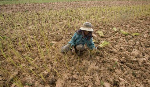 El Nino: 1,700 Pam, 281 Telaga Tiub Disedia Di Kawasan Pertanian