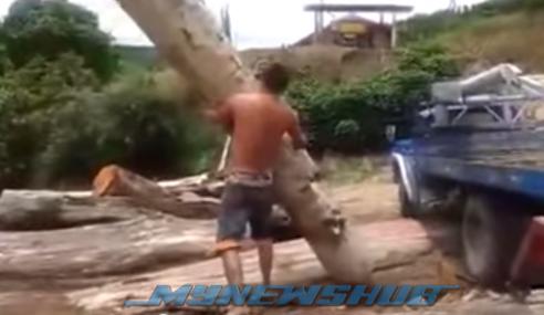 VIDEO: 'Badang' Brazil Angkat Kayu Balak Guna Tangan Je!