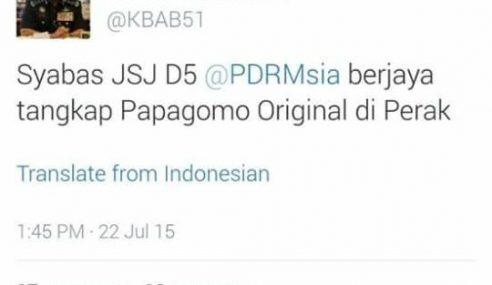 'Papagomo Original' Berjaya Ditahan Di Perak – KPN