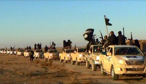 Kerajaan AS Hairan Militan Daesh Suka Sangat Toyota Hilux