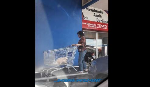 Lagi Insiden 'Dalam Troli Ada Anjing' Di Pasar Raya Tesco
