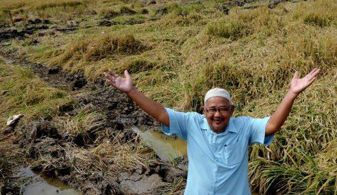 Hampir 200 Petani Rugi Rm1.6 Juta Tanah Sawah Jerlus
