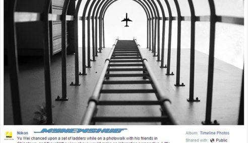 Gambar Palsu Ini Memenangi Pertandingan Anjuran Nikon
