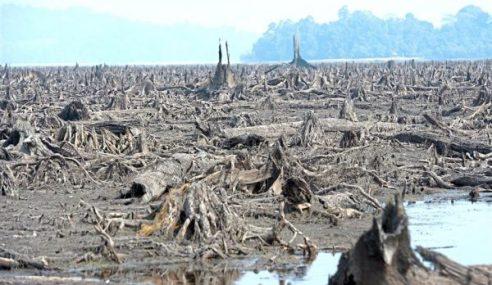 El Nino: Isytihar Bukit Merah Kawasan Bencana Perlu Penelitian Rapi