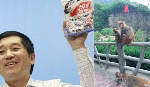 Tragis, Pelancong Maut Terkena Batu Dibaling Monyet