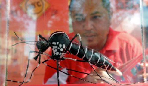 Pengusaha Ladang Rempah, Herba Hasilkan Teknologi Hapuskan Aedes