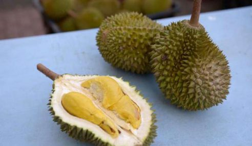 Pil Tidur Dalam Durian, Taktik Rogol Pekerja Salon