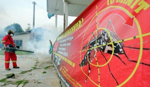 Wanita 34 Tahun Mangsa Denggi Ke-15 Di Terengganu