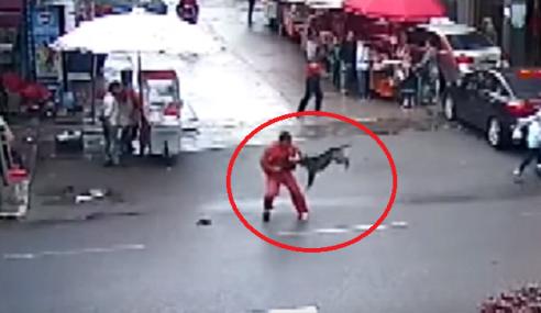 Video: Anjing Gila Serang 20 Mangsa Dalam 2 Jam
