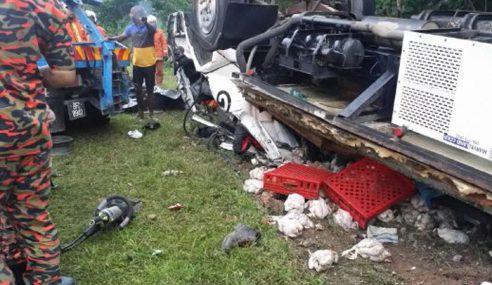 Pemandu Lori Ayam, Kelindan Maut Kemalangan Di Jempol