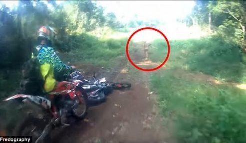 Video: Penampakan 'Makhluk Kerdil' Di Hutan Aceh
