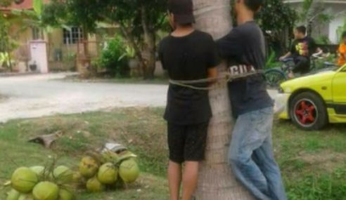 2 Lelaki Diikat Di Pokok Gara-Gara Curi Kelapa