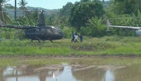 Sanggup Naik Helikopter Untuk Nikmati Harumanis