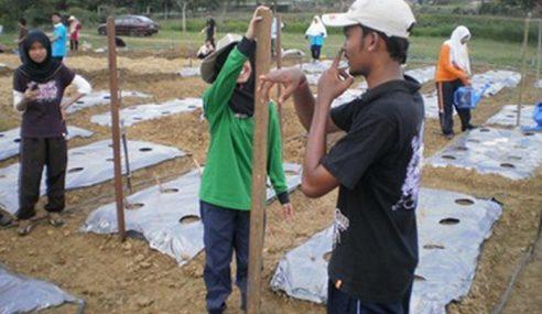 Golongan Muda Disaran Pilih Sektor Pertanian
