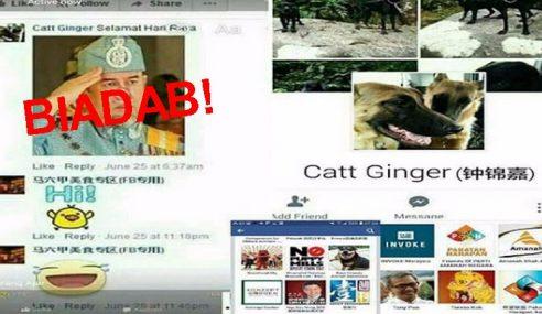 Kes Hina Agong: Catt Ginger Berjaya Ditahan Polis