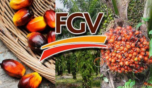FGV Umum Inisiatif Pengoptimuman Tenaga Kerja