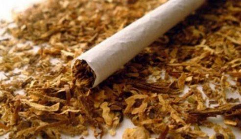 36 Kompaun Berkaitan Kesalahan Tembakau Dikeluar