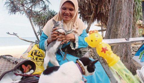 Siti Endon Trauma Tinggal Di Bilik Sewa