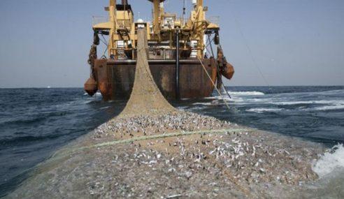 Kaji Semula Lesen Pukat Tunda Jejas Nelayan Pantai