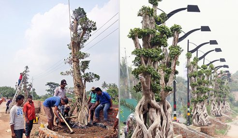 Pokok Bonsai Cina Hiasi Ibu Kota Bangladesh