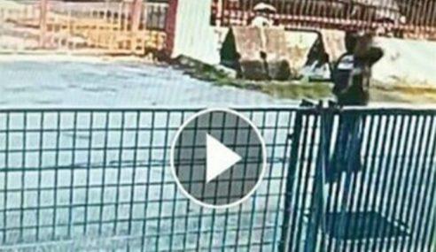 CCTV Rakam Seks Luar Tabii Dengan Anjing