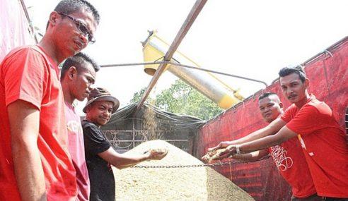 Projek Pertanian Tingkatkan Pendapatan Rakyat