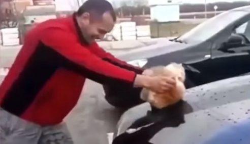 Lelaki Bodoh Dikecam, Kucing Pengelap Kereta