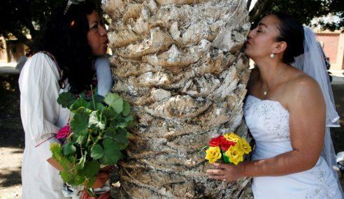 Bosan Dengan Lelaki, Wanita Mexico Kahwini Pokok