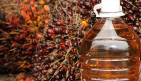 Import Minyak Sawit India Meningkat