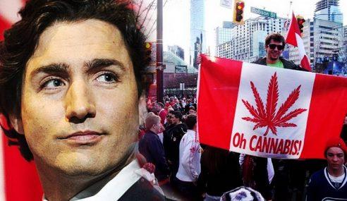 Senat Kanada Undi Lulus Penggunaan Ganja