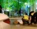 Wanita Maut Ketika Cuba Melarikan Diri Dari Polis