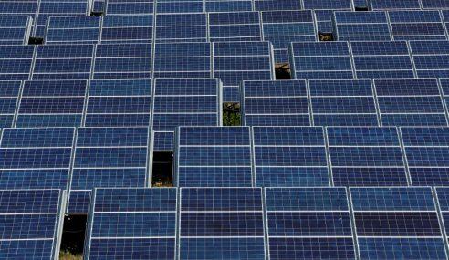 Projek Solar: Pengarah Urusan, Peguam Direman