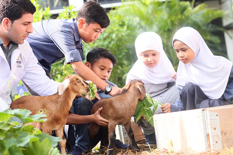 IDRISSI School, Pilihan Terbaik Sekolah Islam Antarabangsa