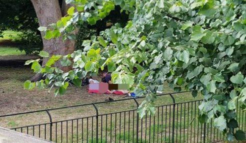 4 Individu Kantoi Buat 'Projek' Di Taman Awam