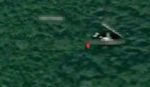 Pakar Peta Google Dakwa MH370 Dalam Hutan Kemboja