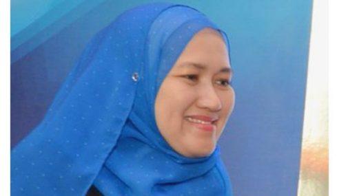 Nik Amlizan Dilantik Ketua Eksekutif LTAT Baharu