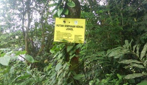 Keluasan Hutan Simpan Kekal Bertambah
