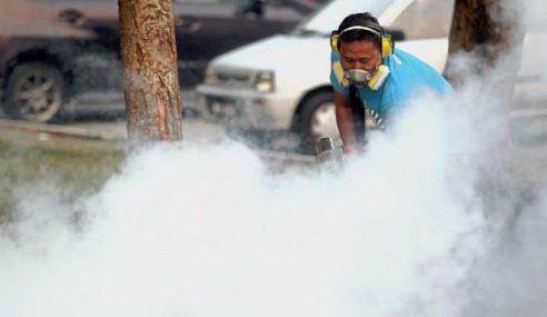 Kes Demam Denggi Di Kedah Meningkat
