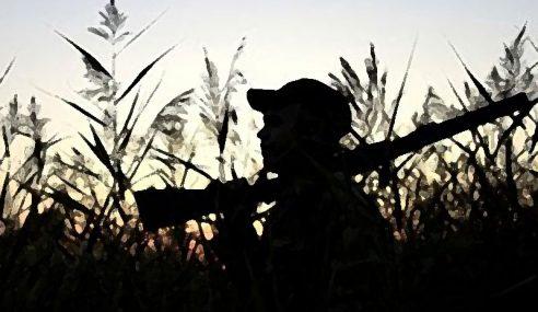 Lelaki Tertembak Mati Rakan Ketika Buru Babi Hutan
