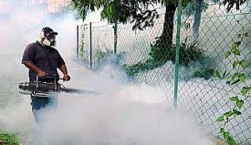 Kes Denggi Di Johor Catatkan Penurunan
