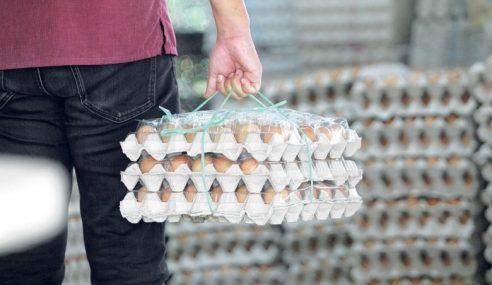MyCC Siasat Isu Kenaikan Harga Telur Ayam
