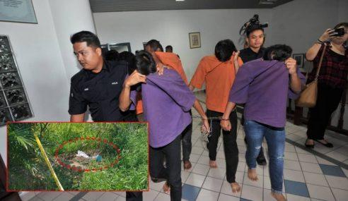 Remaja, 2 Rakan Disyaki Tanam Janin Di Sawah