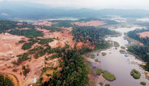 Pahang Bertindak Atas Dakwaan Tasik Chini Diceroboh
