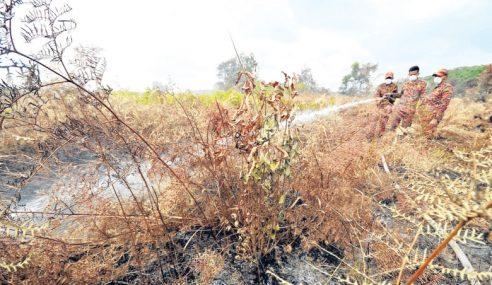 Kemarau: Hutan 3 Jajahan Berisiko Tinggi Kebakaran