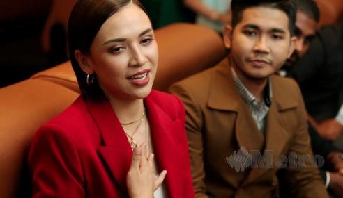 Diana Disenarai Hitam LHDN, Tunggakan RM350,000