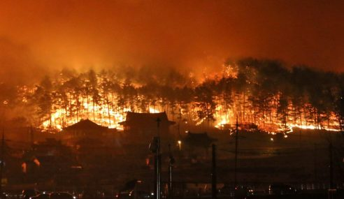 Seoul Isytihar Darurat, Kebakaran 5 Bandar Di Gangwon