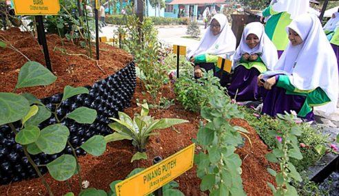 Sains Pertanian Bakal Diperkenalkan Semula Di Sekolah
