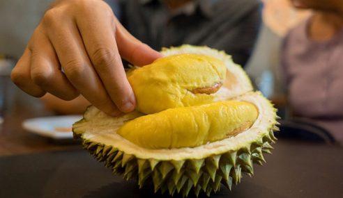 Dilarang Makan Durian Semasa Memandu
