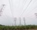 Tiada Kenaikan Tarif Elektrik Hingga Disember